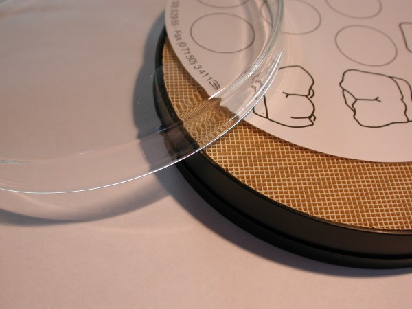 Simpliwet Filtermembran, 100 Blatt